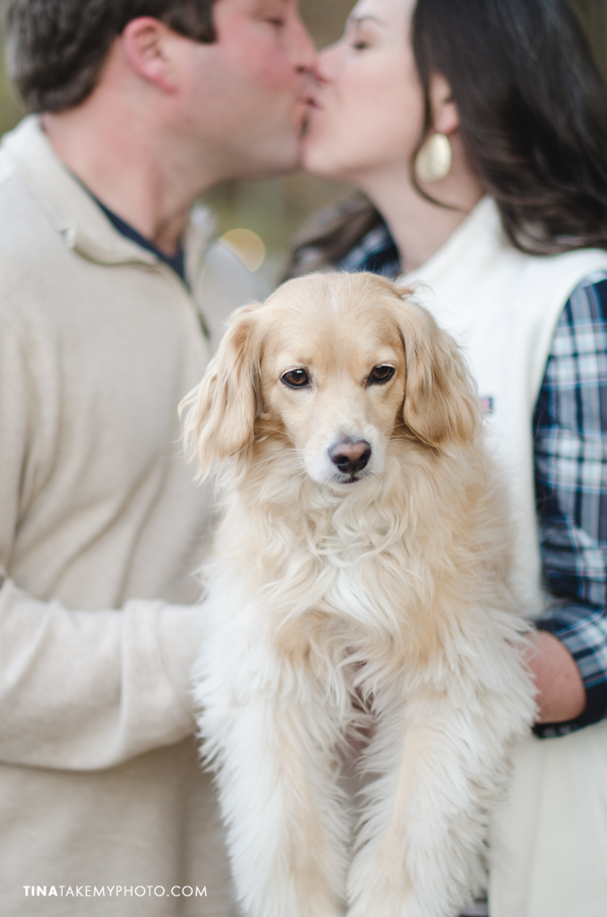 Swift-Creek-Engagement-Photography-Cute-Dog-Pets-Sneak