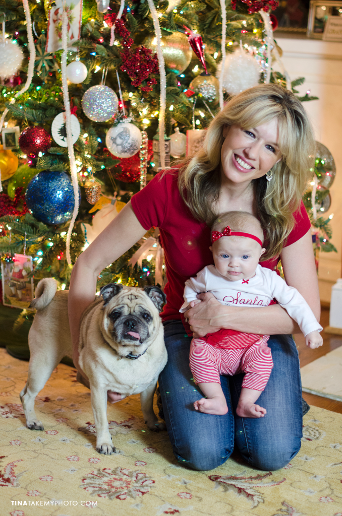 Richmond-Holiday-Christmas-Tree-Family-Portraits-Dog-Baby (1)