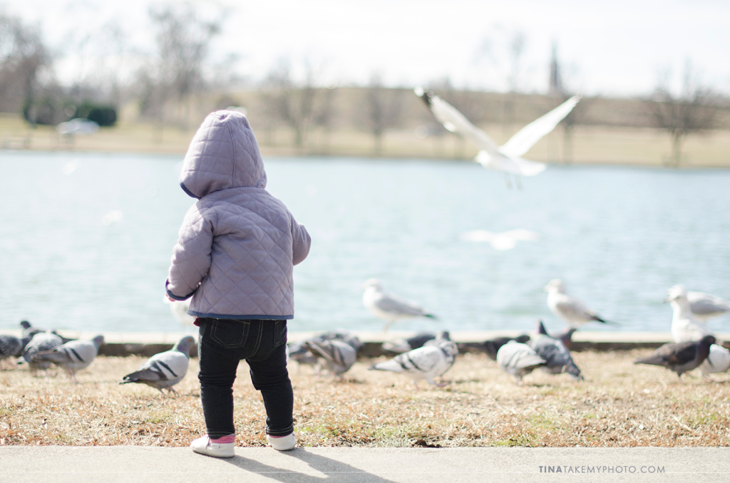 Richmond-RVA-Family-Photography-Session-Byrd-Park-Winter-Baby-Seagulls-Pigeons-11