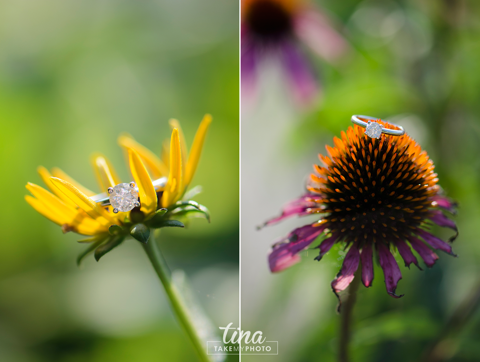 Macro-Nikon-Wedding-Ring-Bling-Diamond-Daisy-Flower-Purple-Yellow-Engagement-Photographer-Maryland-Virginia-Summer
