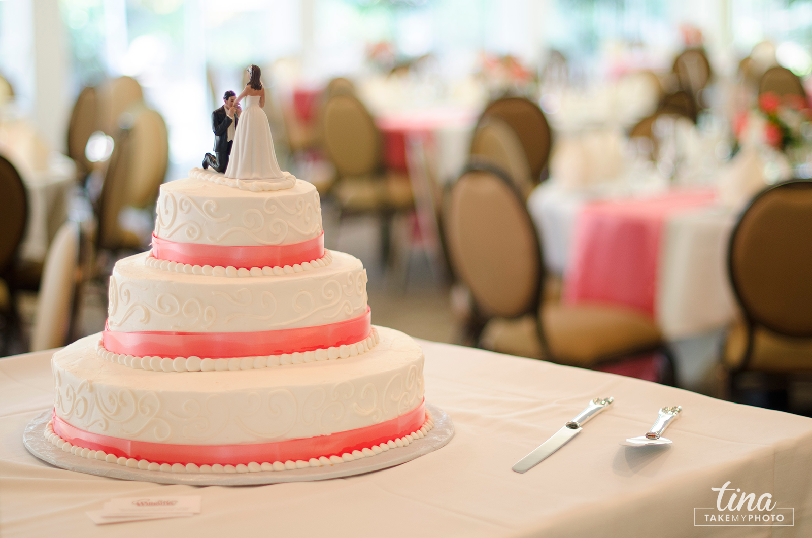 wedding-photographer-cake-topper-pink-summer-brandermill-country-club-virginia-1