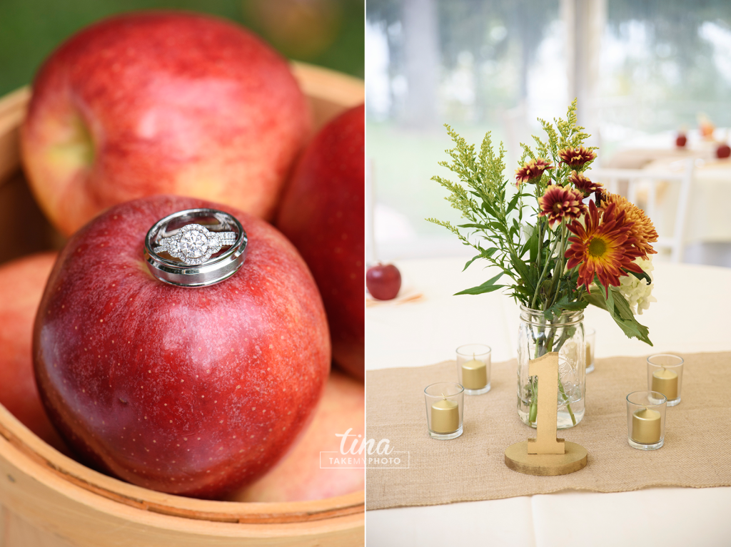 apples-ring-centerpiece-Richmond-virginia-wedding-photographer-tina-take-my-photo-fall-celebrations-reservoir-details-01
