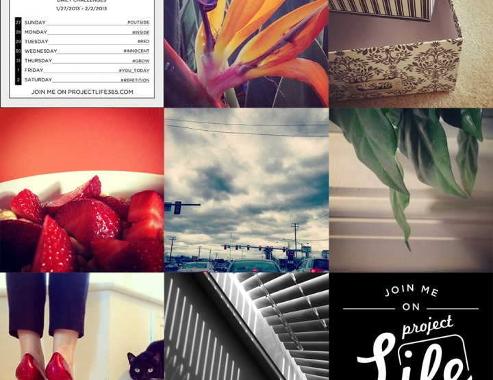 Project Life 365: Week 5