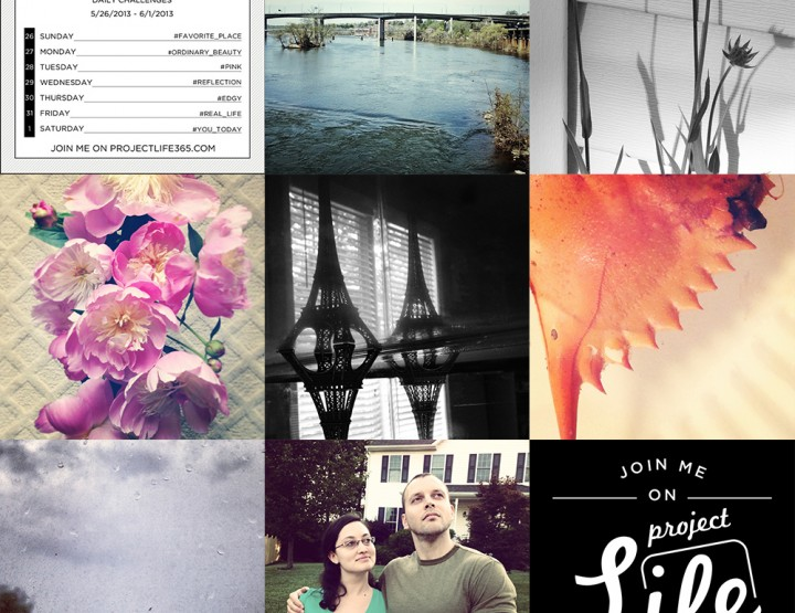 Project Life 365: Week 21 and 22