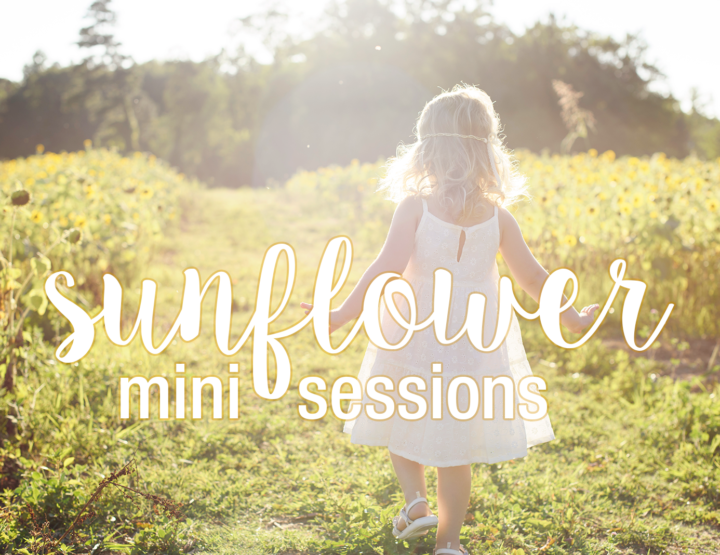 Sunflower Mini Sessions! [Richmond, VA Family Photographer]