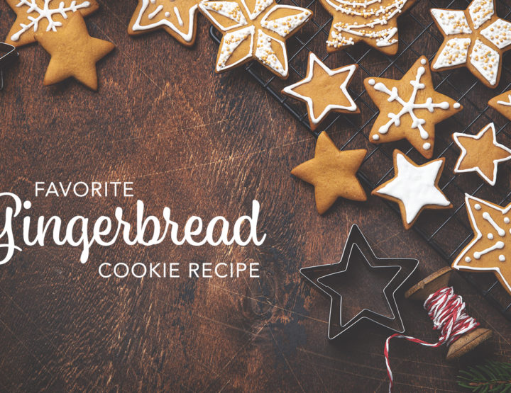 My Favorite Gingerbread Cookies Recipe
